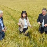 Staatsministerien Michaela Kaniber informiert sich über die Ernte 2020